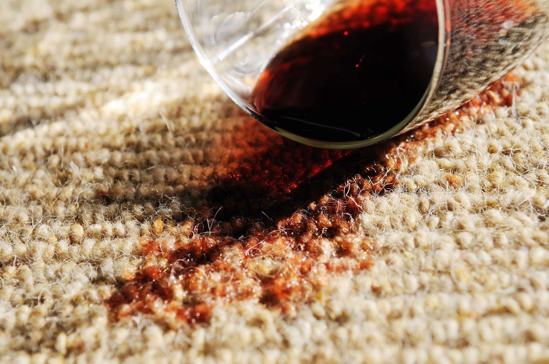 Granger Elkhart, Indiana Bristol IN Carpet Cleaning Services